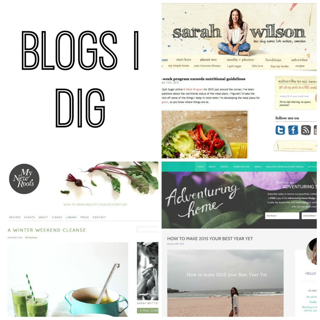 BLOGS I DIG :: featuring the blog that made me want to start my own blog, one of my favourite sites for healthy (and delicious) recipes and one of my go-to sites for some inspiration when I want to shake up my life a bit! www.oneinfinitelife.com/blogs-i-dig-2/