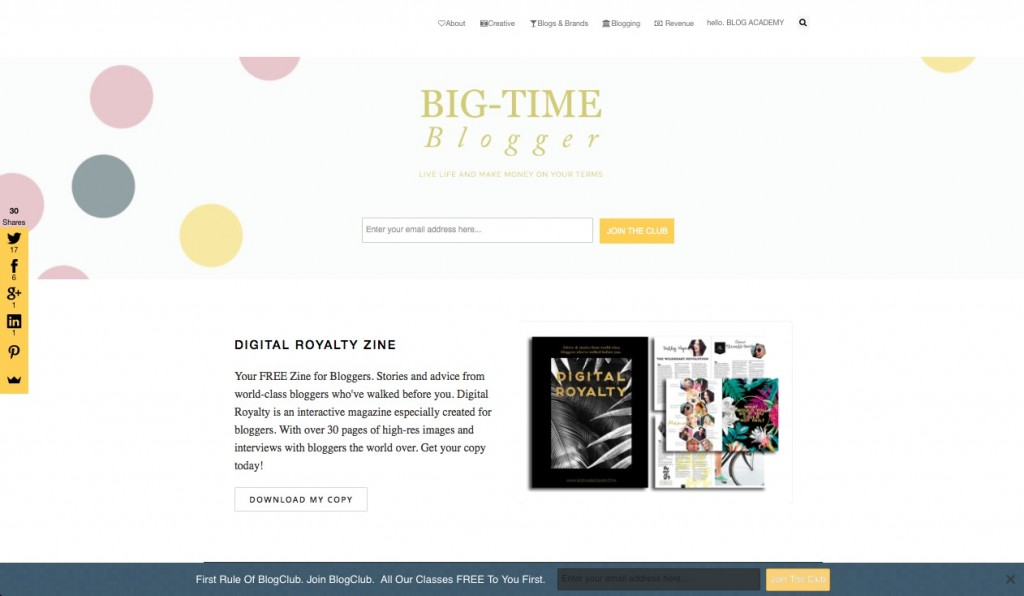 Big-Time Blogger contains information from creating a blog (and maintaining it), to using your blog as a business - think monetising, generating traffic and marketing. All in a totally transparent, honest, authentic and helpful way. http://www.bigtimeblogger.com