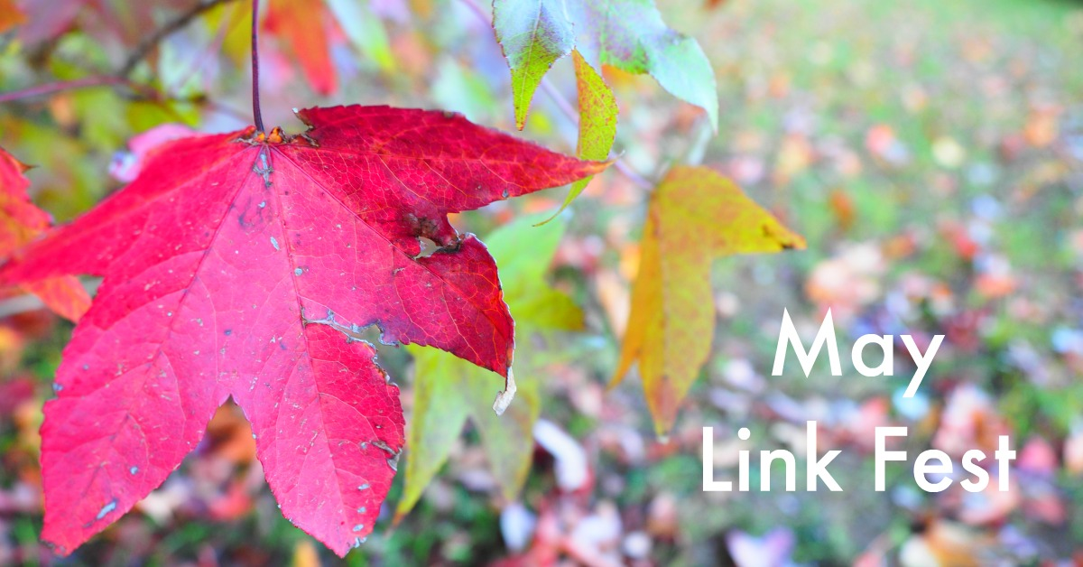 May Link Fest: A collection of my favourite articles I've read on the Internet recently >>> https://oneinfinitelife.com/may-link-fest-2/